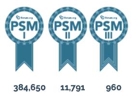 scrum master zertifikat Aufteilung